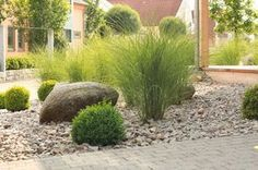 Pflegeleichter Vorgarten aus Steinen und Sträuchern