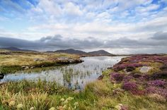 Moorland near Daliburgh on the Isle of South Uist