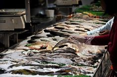One-third of seafood mislabeled, study finds