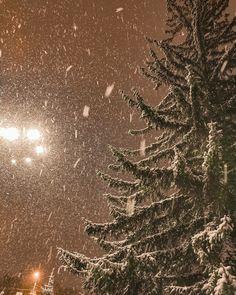 Winter Snow, Winter Time, Winter Season, I Love Snow, Winter Photos, Winter Scenery, Just Dream, Snowy Day, Christmas Mood