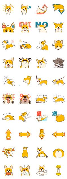 Corgi dog stamp . His name is Kocha(tea)
