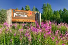 Fairbanks, Alaska. Born and Raised. I love it here but I wish I could afford to move...not too many pet friendly places...