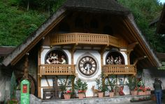 1000 images about cuc cuc on pinterest cuckoo clocks clock and google - Albero modern cuckoo clock ...