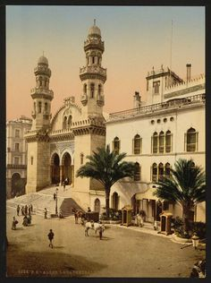 Cathedral, Algiers, 1899.