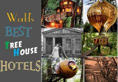 6 luxury Tree House hotels in the world