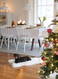 Weihnachtszeit | SoLebIch.de - Foto von Mitglied Röda Hus #solebich #interior #einrichtung #inneneinrichtung #deko #decor #weihnachten #christmas #advent #Weihnachtsdeko #christmasdecor #adventsdeko #adventdecor #esszimmer #diningroom #diningtable #dog #hund #weihnachtsbaum  #christbaum #christmastree
