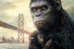 Wie wird der Krieg zwischen Menschen und Affen enden?