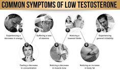 Tribulus Power Vale a Pena? Testosterone Deficiency, Low Testosterone Symptoms, Muscle Tone, How Are You Feeling, Feelings, Infographic, Symptoms Of Low Testosterone, Fat