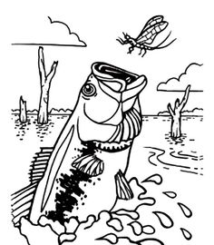 Bass Fish Coloring Pages | Free coloring pages | Fish ...