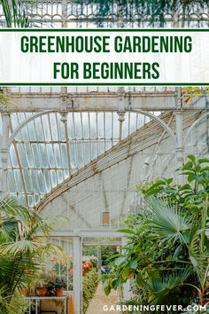 Greenhouse Gardening for Beginners. A greenhouse is a backyard warm and stable environment where you can grow crops all year round. In greenhouse gard… - All About Gardens Landscaping Supplies, Front Yard Landscaping, Backyard Landscaping, Landscaping Ideas, Backyard Ideas, Gardening For Beginners, Gardening Tips, Gardening Zones, Gardening Supplies