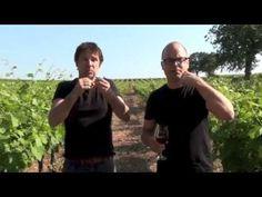 Parler Vin avec les Mains - La dégustation de vin en langue des signes: Phase olfactive.m4v