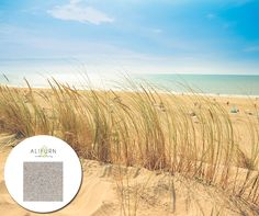 Life's a beach! Aurastone is a high-end all-weather product ideal for the tops of outdoor tables. Try it in Sandy Beach… Outdoor Tables, Coast, Fabrics, Weather, Outdoor Furniture, Beach, Life, Tejidos, The Beach