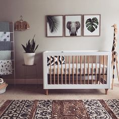 Baby Boy Nursery Room İdeas 540432024031037274 - Safari Nursery with Tropical Vibes Source by jessekillian Baby Bedroom, Baby Boy Rooms, Baby Room Decor, Baby Boy Nurseries, Nursery Room, Kids Bedroom, Nursery Decor, Nursery Ideas, Safari Bedroom