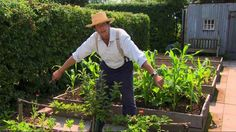 Gardeners' World ep.22 2015 Carol Klein catches up with Geoff and Sally Davis to see how their garden renovation project is coming along. And Monty Don is at Longmeadow enjoying the fruits of his l...