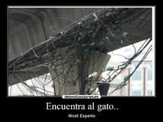 """Encuentra Al Gato """"Nivel Experto"""" - Taringa!"""