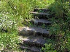 foto's ecologische tuinen - Google zoeken