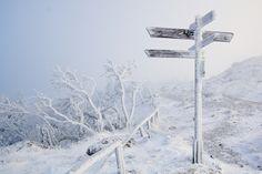 Wegweiser im Schnee © Gerald Grote