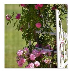 Romantic Garden Gate with Roses Shower Curtain