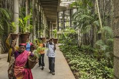 The Indian architect has been awarded the Pritzker Architecture Prize, known as the Nobel for architects. His buildings reflect an investment in local materials, social change and the environment.