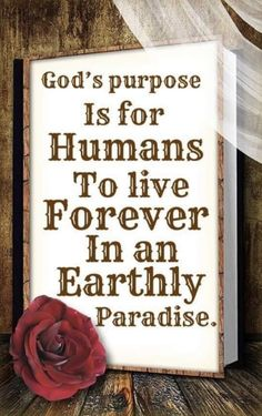 Life In Paradise, Jehovah, Inspirational Quotes, God, Life Coach Quotes, Dios, Inspiring Quotes, Allah, Quotes Inspirational