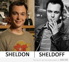 sheldoff.