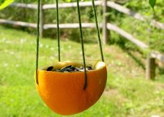 orange birdfeeder, biodegradable, recycle. pick your seeds to draw type of birds wanted. rhythm of the home blog
