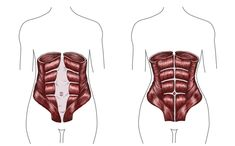 Most new moms suffers from common postpartum symptoms and the most dreaded physical problem nearly one third of new moms go through is Diastasis Recti.
