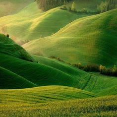 Rolling green hills.