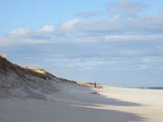 Nauset Beach, Orleans, Massachusetts.  Cape Cod.