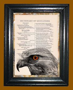 Hawk Portrait  Vintage Dictionary Book Page Art  by CocoPuffsArt