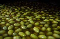 Resultado de imagen de ver como se hechan las aceituna cocidas en vinagre