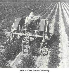 Cultivating potatoes on a Michigan Farm 1936 with a new C-Case Tractor this tractor was painted a dull gray.You could cultivate from day light untill dark and the tractor never needed a rest. This tractor was the for runner to the S-C that came on the market about 1940 to compete with the Farmall H, B John Deere,Oliver60 Allis Challmer B and don't forget the little gray Ford. It was the begining of the end of farming with horses.