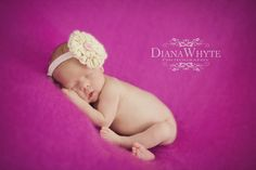 Newborn girl Photography Diana Whyte Photography