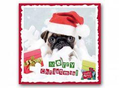 Hunderassen WeihnachtskartenMyrna Weihnachtskarte: Mops