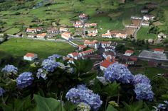 Flores, Azores, Portugal  Would love to visit my family here, as many still live there since it's where my grandpa moved from years ago!