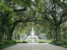 Forsyth Park Reason for Start Living in Savannah, GA