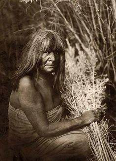 Here for your perusal is an original photograph of Hipah With Arrow-Brush. It was created in 1907 by Edward S. Curtis.    The photograph illustrates Maricopa Indian, three-quarter length portrait, sitting, facing right holding, arrow-brush stalks in hand.    We have compiled this collection of photographs mainly to serve as a valuable educational resource. Contact curator@old-picture.com.