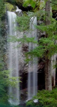 Grotto Falls, Oregon: 100' plunge waterfall, 0.3 mi-trail. N Umpqua Ranger Dist. Hwy 138, click thru for directions