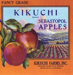 Orchard, river, mountain scene, apple box label, framed