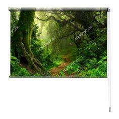 Rolgordijn Mysterieus bos | De rolgordijnen van YouPri zijn iets heel bijzonders! Maak keuze uit een verduisterend of een lichtdoorlatend rolgordijn. Inclusief ophangmechanisme voor wand of plafond! #rolgordijn #gordijn #lichtdoorlatend #verduisterend #goedkoop #voordelig #polyester #bos #woud #groen #natuur #pad