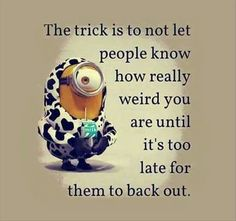 The Trick Is funny quotes quote crazy funny quote funny quotes humor minions minion quotes Minion Jokes, Minions Quotes, Funny Minion, Funny Jokes, Funny Stuff, Funny Sarcasm, Hilarious Quotes, Crazy Funny, Jokes