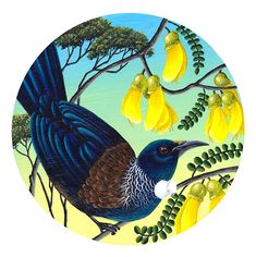 Round Paintings by Anna Evans. New Zealand Wildlife, Tui Bird, Bird Coloring Pages, Colouring, Maori Patterns, Canadian Wildlife, Decoupage, Goddess Tattoo, New Zealand Art