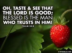 Taste and see that the Lord is good; blessed is the one who takes refuge in him. Psalm 34:8