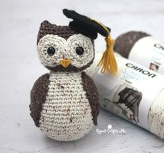 Crochet Wise Old Owl with Graduation Cap