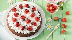 Rezept Marienkäfer-Kuchen