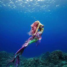 Is #mermaidmonday a thing?  Mermaid @hannahmermaid  @aliciaunderwater  #mermaid #mermaids #mermaidsarereal #onebreath #epic #ocean #beautiful #apnea #deeperbluephoto #freediving #girlsthatfreedive #freediver #uwphoto #underwaterworld #waterwoman #saltlife #explore #awesome #underwatermodel #underwaterphotography #creative #breathhold #mondayvibes #mermaidhair #mermaidhairdontcare #mermaidlife http://ift.tt/2BTQKJo