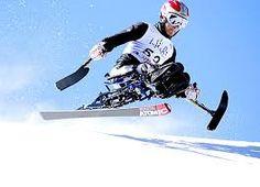 장애인 스키에 대한 이미지 검색결과