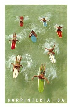 ... it's summer! surf's up! ...