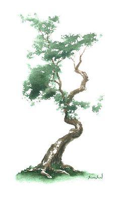 Zen Tree 612
