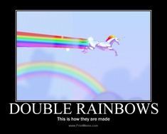 See more 'Double Rainbow' images on Know Your Meme! Unicorn Memes, Unicorn Poster, Rainbow Images, When You Believe, Know Your Meme, Rainbow Unicorn, Summer Fun, Facts, Funny